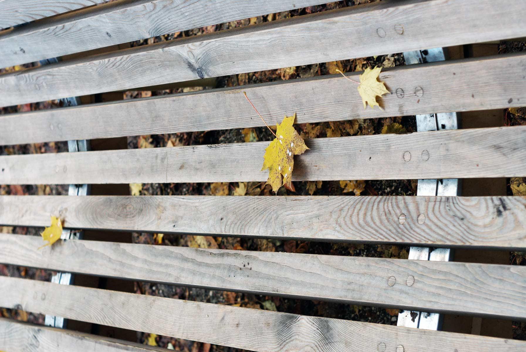 vergrauen von lärchenholz