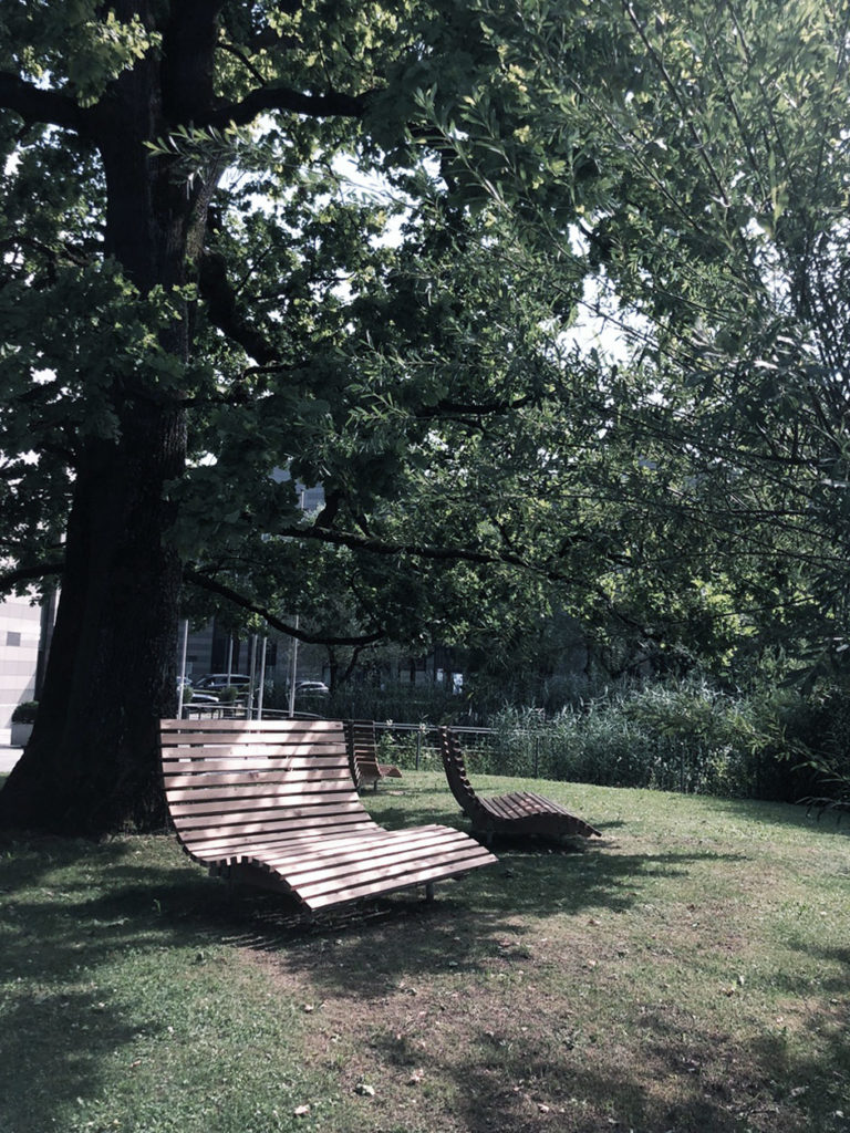 forest-bathing-hangsofa-18