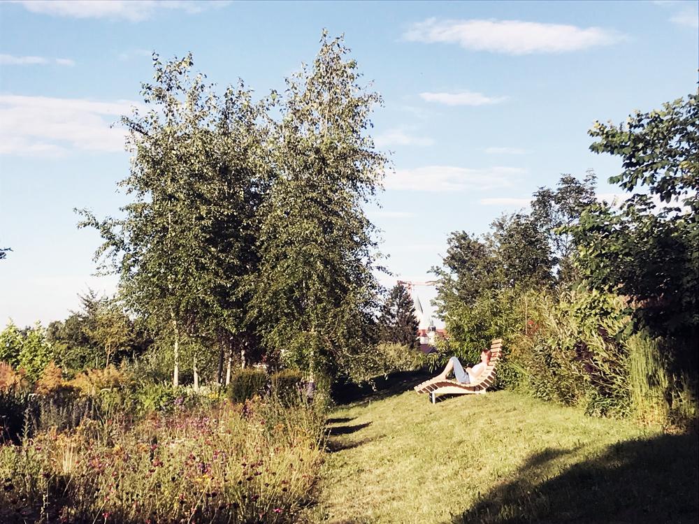 Bank für Senioren im Gewürzgarten